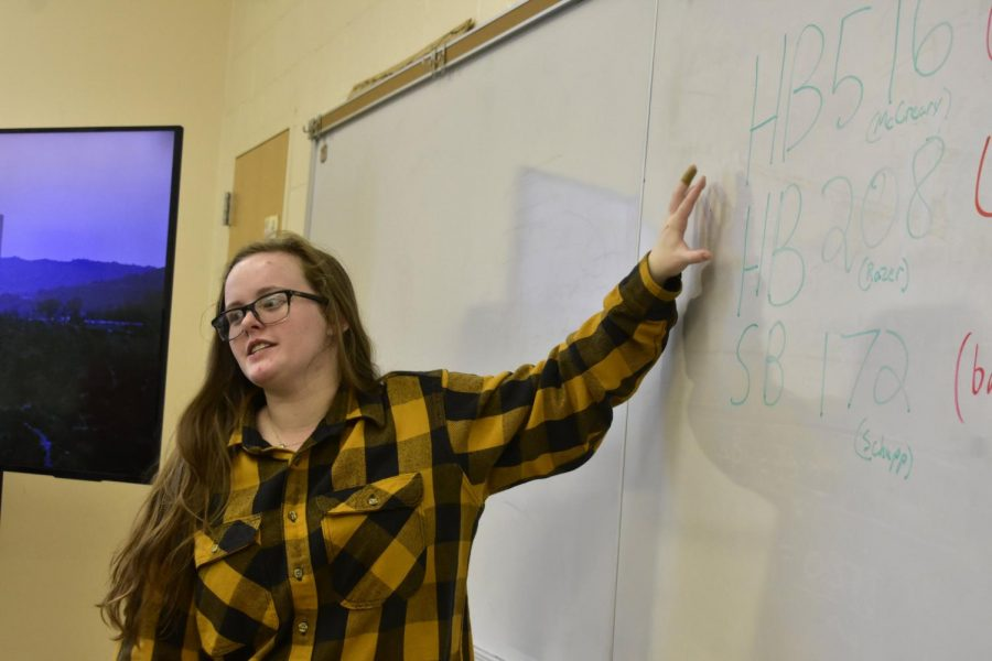 McKenna Chappell, junior, leads GSA as they discuss equality day Jan. 15.
